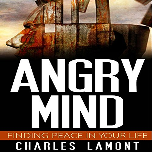Angry Mind cover art