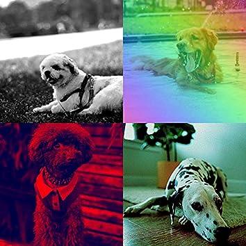 楽しげ-かわいい犬