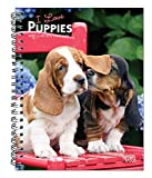 I Love Puppies 2021 6 x 7.75 Inch Spiral-Bound Wire-O Weekly Engagement Planner Calendar | New Full-Color Image Every Week | Animals Dog Breeds Puppy