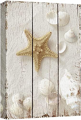 wall26 - Star Fish and Sea Shells on The Sand - Canvas Art Wall Art - 12'x18'