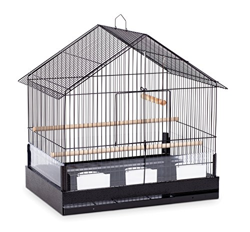 Prevue Pet Products Lincoln Bird Cage, Black, 22 x 15 x 23 inches (110B)