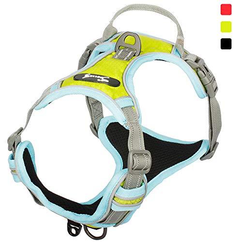 PETTOM Hundegeschirr Verstellbar Brustgeschirr Reflektierend Hunde Geschirr Dog Harness für Große Mittlere und Kleine Hunde (M, Grün)