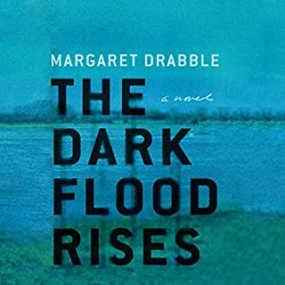 The Dark Flood Rises cover art