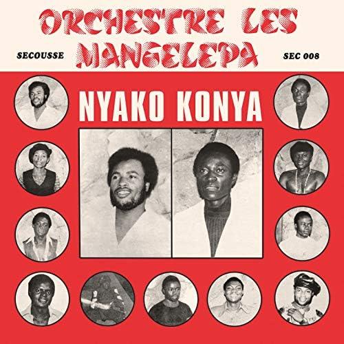 Orchestre Les Mangelepa