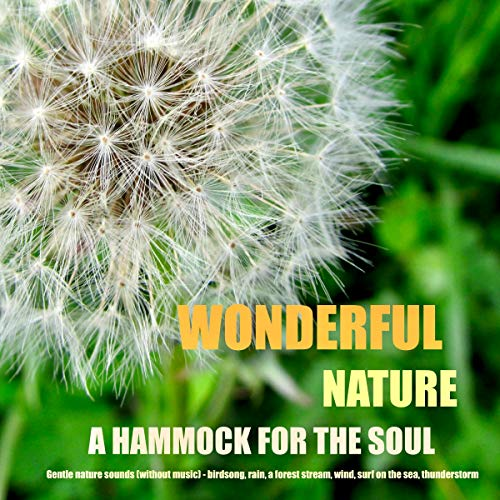 Wonderful nature - A hammock for the soul: Gentle nature sounds (without music) - birdsong, rain, a forest stream, wind, surf on the sea, thunderstorm
