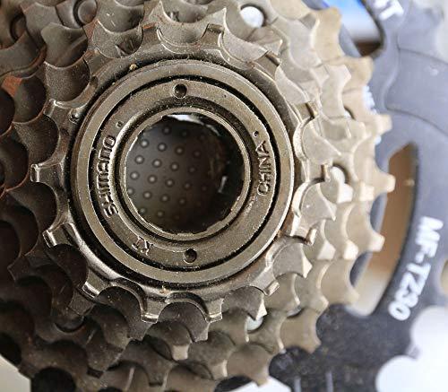 SHIMANO MF-TZ20 Tourney Freewheel (14-28T 6 Speed)