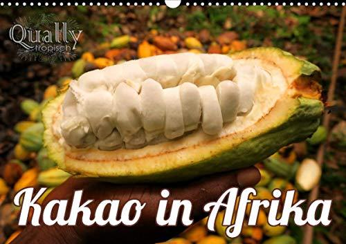 Kakao in Afrika (Wandkalender 2021 DIN A3 quer)