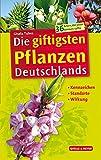 Die giftigsten Pflanzen Deutschlands: Kennzeichen – Standorte – Wirkung