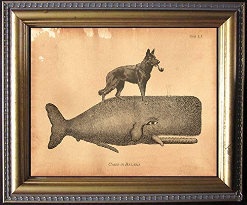 Black German Shepherd Dog Riding Whale Vintage Collage Print Tea Stained dog art dog gift for dog mom gift for her dog novelty gift wall decor matte art print