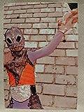 仮面ライダー チップス カルビー Calbee 1999 怪魚人アマゾニア 19