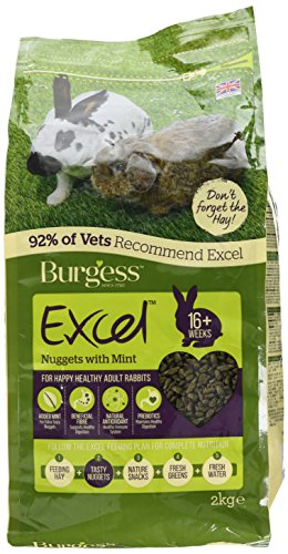 Burgess - Excel Mint Adult - Alimento para conejos, 2 kg