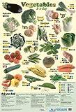 Grindstore Poster Gemüse 5 A Day 40x60cm