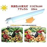 高演色LED蛍光灯エコピカLUMI ナチュラル120cm