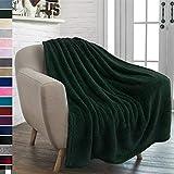 PAVILIA Plush Sherpa Throw Blanket for Couch Sofa | Fluffy Microfiber Fleece Throw | Soft, Fuzzy, Cozy, Shaggy, Lightweight | Emerald Green Blanket | 50 x 60 Inches