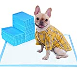 WISPET - Puppy Pads and Dog Pee Pads 22'x22' -100 Count - Super Absorbent & Leak-Free Potty Pads for Dogs and Pet Training Pads