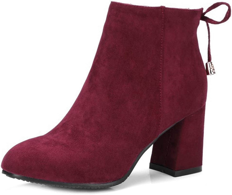 GIY Women's Retro Dressy Chunky Heel Ankle Boots Suede Platform Bootie Side Zip Tassel Martin Short Boot