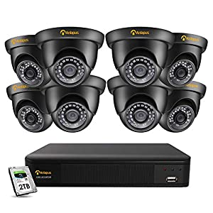 Anlapus 5MP CCTV Camera System, 8CH H.265+ 2K Surveillance DVR with 2TB Hard Drive and 8x 5.0MP Outdoor Weatherproof Dome Security Camera, IP66, 100ft Night Vision, Motion Detection