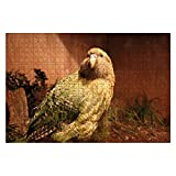 AYYUCY Wooden Puzzle 1000 Pieces New Zealand Kakapo Parrot Strigops habroptilus Jigsaw Puzzles for Children or Adults Educational Toys Decompression Game