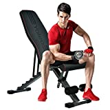 Yoleo Adjustable Folding Weight Bench (2020 Special Edition), 330lbs Weight Capacity, Decline/Incline/Flat, Workout Bench for Home Gym, Strength Training Exercise