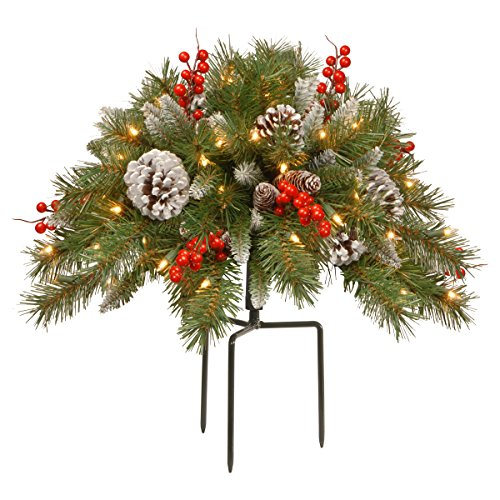National Tree Company National Tree 18 Inch Frosted Urn Filler with Cones, Red Berries, Tripod Stake and 35 Warm White Battery Operated LED Lights with Timer (FRB-300-18U-B), 18""