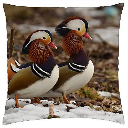 LESGAULEST Throw Pillow Cover (24x24 inch) - Mandarins Snow Beach