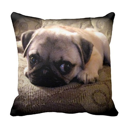 Pug Dog Lying on the Sofa Pillow Home Decorative Throw Pillow Cover Cushion Case Pillow for Sofa or Bed 18