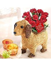 母の日 カーネーション3号鉢 花コラボ ケーキ洋菓子 花とスイーツ 花鉢 生花 母の日のプレゼント フラワーギフト (わんちゃん茶×カーネ赤)