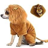 Idepet Haustier Kostüm, Halloween Hund Cosplay Löwe Kostüm Weihnachtswelpe Kleiner Hund Lustige Cosplay Outfits, Katzen Lustige Kleidung Dressing Up Partys Haustier Kleidung Anzüge (M)