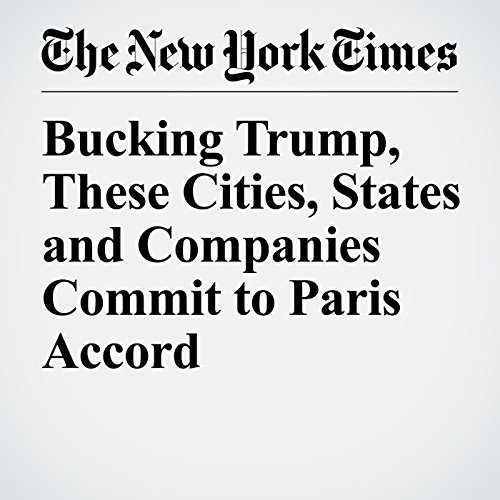 Bucking Trump, These Cities, States and Companies Commit to Paris Accord copertina
