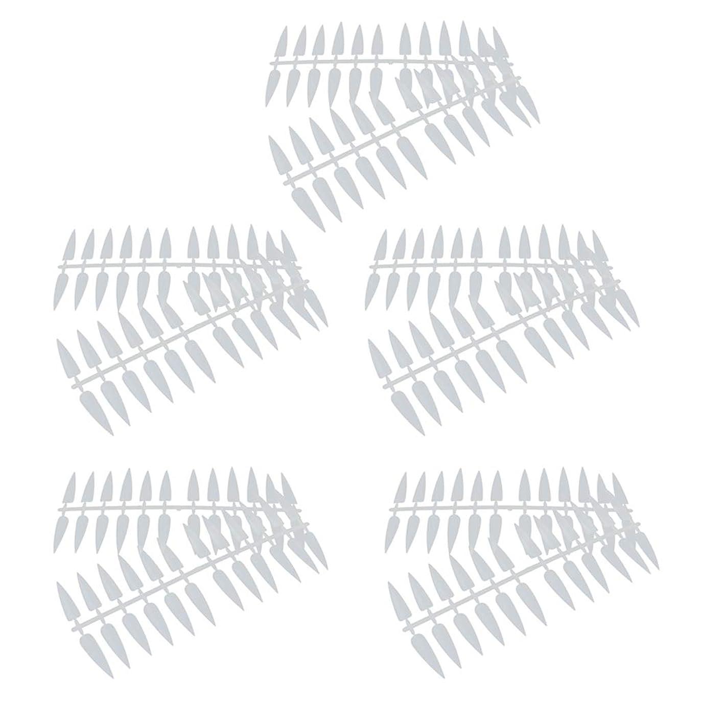 反映する振動する誘惑P Prettyia ネイルアート カラー表示チャート カラーモデル マニキュア 2色選べ - ナチュラル