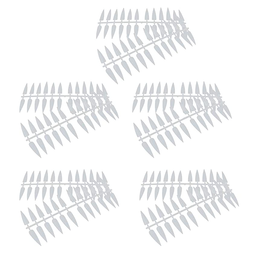 満足させる補体不倫P Prettyia ネイルアート カラー表示チャート カラーモデル マニキュア 2色選べ - ナチュラル