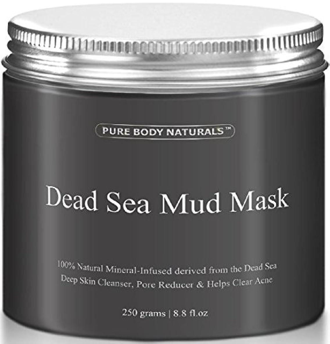光沢やりがいのある空白Dead Sea Mud Mask 死海の泥マスク 250g [並行輸入品]