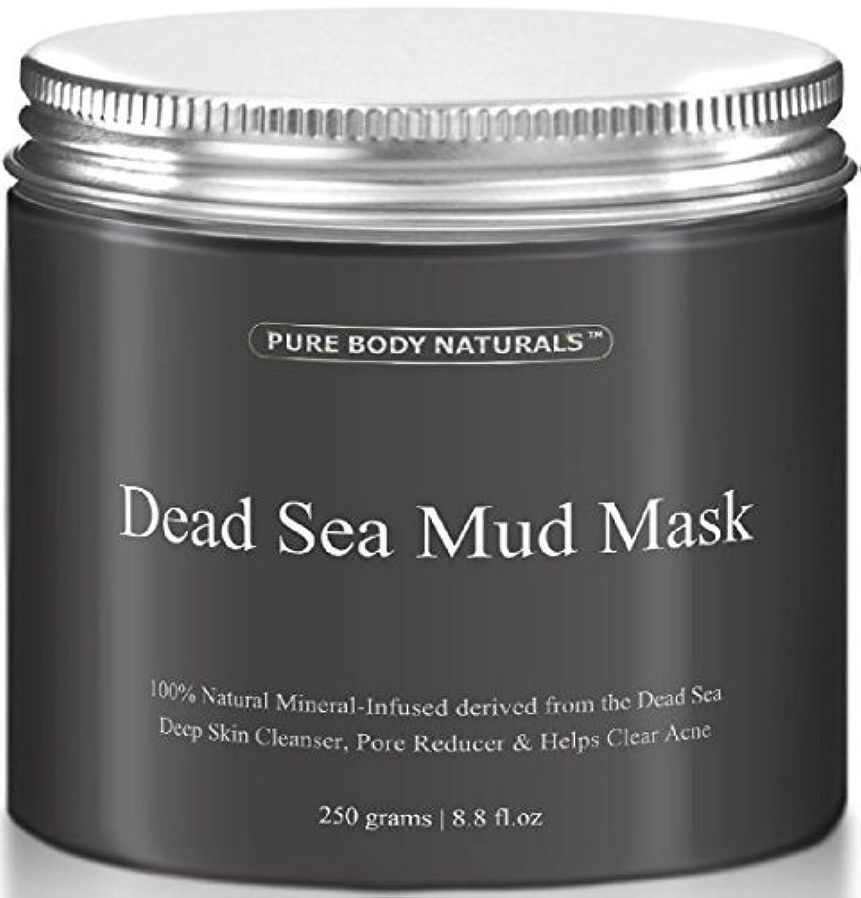 脅迫苦しむ順応性のあるDead Sea Mud Mask 死海の泥マスク 250g [並行輸入品]