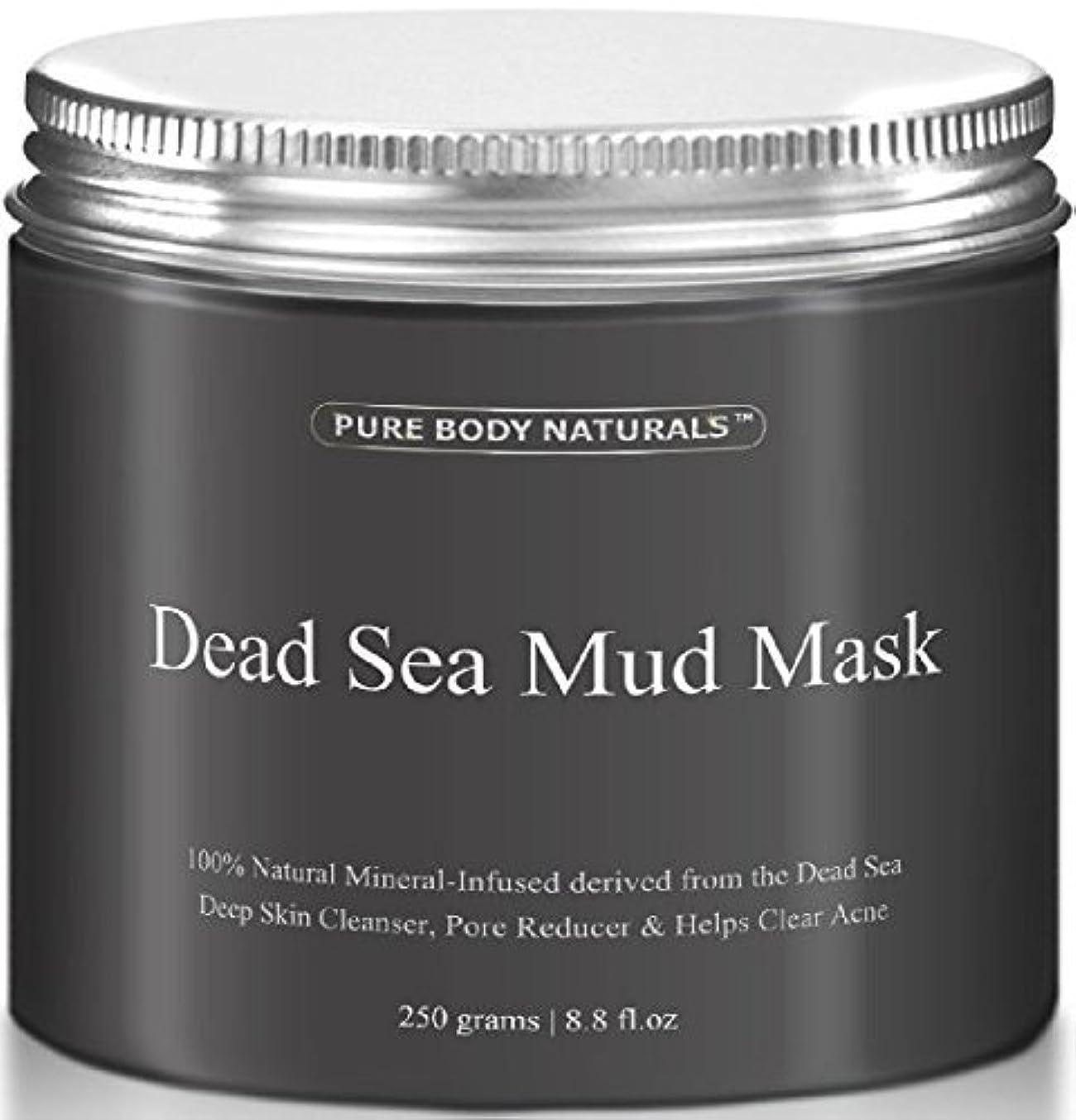 小人構想する十代Dead Sea Mud Mask 死海の泥マスク 250g [並行輸入品]