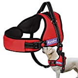 PetLove Dog Harness, Adjustable Soft Leash Padded No Pull Dog Harness for Small Medium Large Dogs, Red