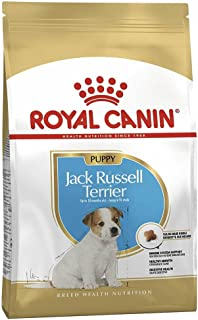 Royal Canin BHN Jack Russell Puppy 1.5 kg Breed Health Nutrition Dog Food
