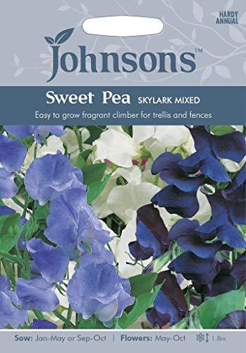 Portal Cool Johnsons Sweet Pea Skylark 35 graines Environ mixte Sow D'ici 2020