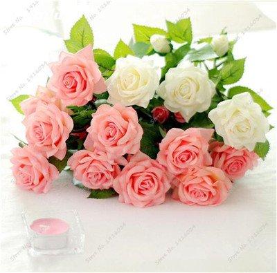 Promotion! 100 Pcs Nouveau Décor Rose Graines Rose chinoise Pots de fleurs Pots Bonsai bricolage Home jardinage Goutte Livraison gratuite 24