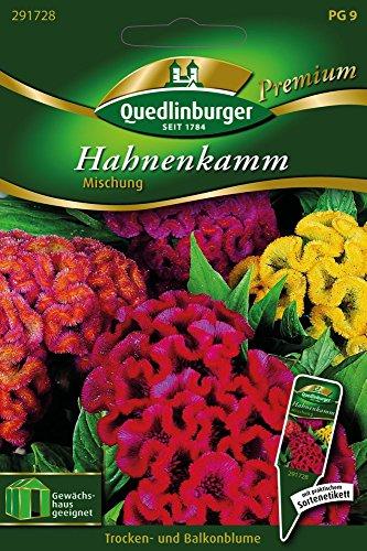 Hahnenkamm Mischung von Quedlinburger Saatgut