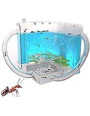BLLJQ Ant Nests, farma mrówki 3D z półprzezroczystym żelowym labiryntem, siedlisko dla dzieci dla mrówki, nauka edukacyjna zabawka