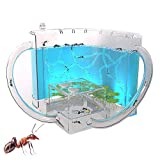 BLLJQ Ant Nests, 3D Ant Farm with Translucent Gel Maze Viewing Area, Ant Farms Habitat for Children for House...