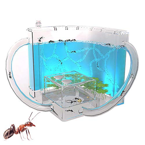BLLJQ Ant Nests, 3D Ant Farm with Translucent Gel Maze Viewing Area, Ant...