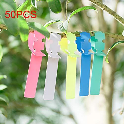 Luoshan 50 PCS Etichetta for Etichetta Floreale Etichetta Floreale Etichetta da Giardinaggio, Consegna Casuale a Colori