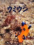 ウミウシ (たくさんのふしぎ傑作集)