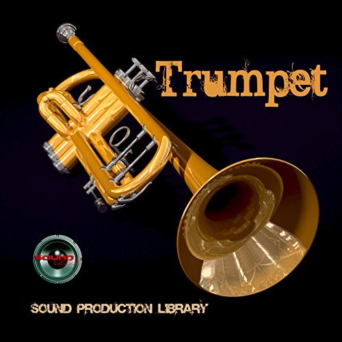 Great Deal! Trumpet Real - Large original 24bit WAVE/Kontakt Samples/Loops Library
