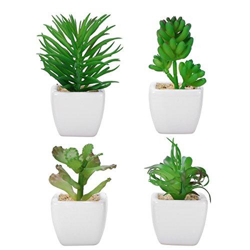 WINOMO 4pcs falsas plantas de simulación falsa suculentas artificialmente suculentas artificiales con placas de cerámica blanca