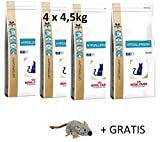 Royal Canin Hypoallergenic (4 x 4,5kg) Mega Pack Katzenfutter + Gratis Lange VARFALLSDATUM