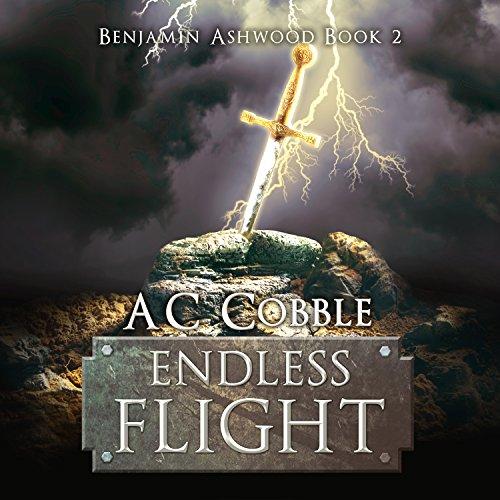 Endless Flight cover art