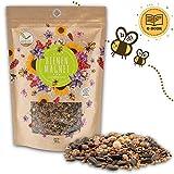 500g Graines de prairie fleurie pour un pâturage d'abeilles coloré - mélange de graines de fleurs sauvages pour abeilles et papillons (eBook GRATUIT inclus)