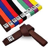 Starpro Cinturones Karate Judo Taekwondo - Diseño Duradero y Liviano | Cinturón Clasificación 9 Colores Algodón 100% Grueso Siete Costuras | 240cm 280cm 320cm